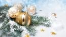 Поздравление председателя Федерации профсоюзных организаций Саратовской области М.В. Ткаченко с наступающим Новым годом